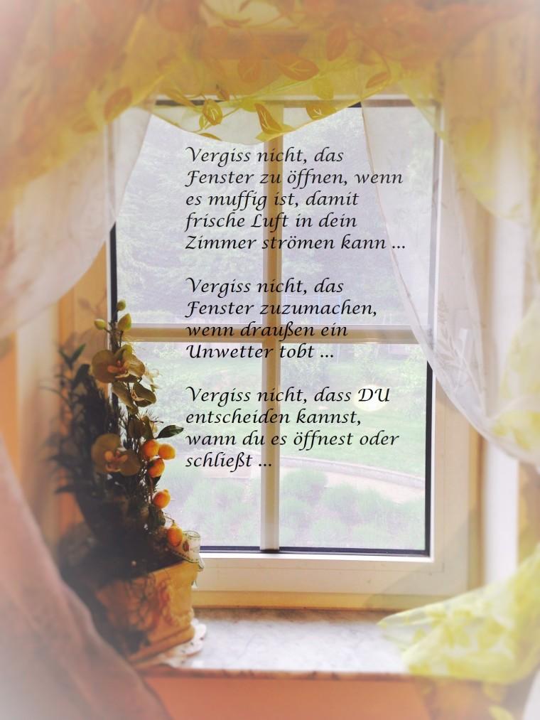 zfenster3 (2)