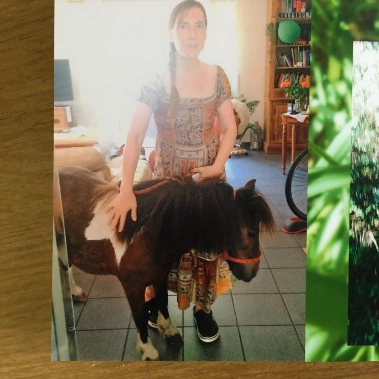 Pony im Wohnzimmer